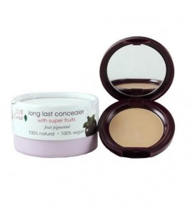 FRUIT PIGMENTED LONG LAST CONCEALER 3 g